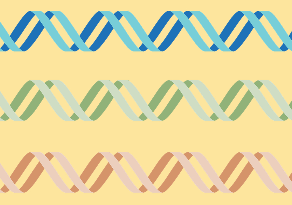 3 different color cartoon drawing of DNA--blue, green, and orange--on a yellow background.