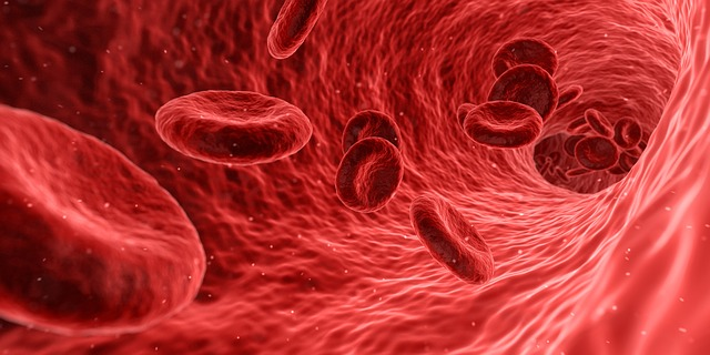 Microsopic image of red blood cells traveling through a vessel.