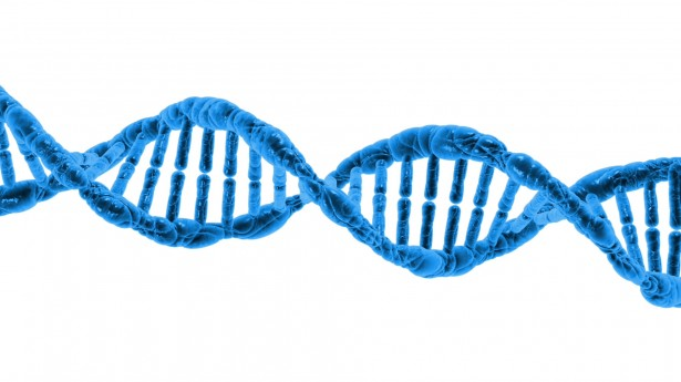 Blue double strand DNA on white background