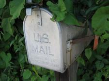"Silver US Mail box, with the statement, ""Approved by the Post-Master General."" In the background of mailbox are leaves from a bush."