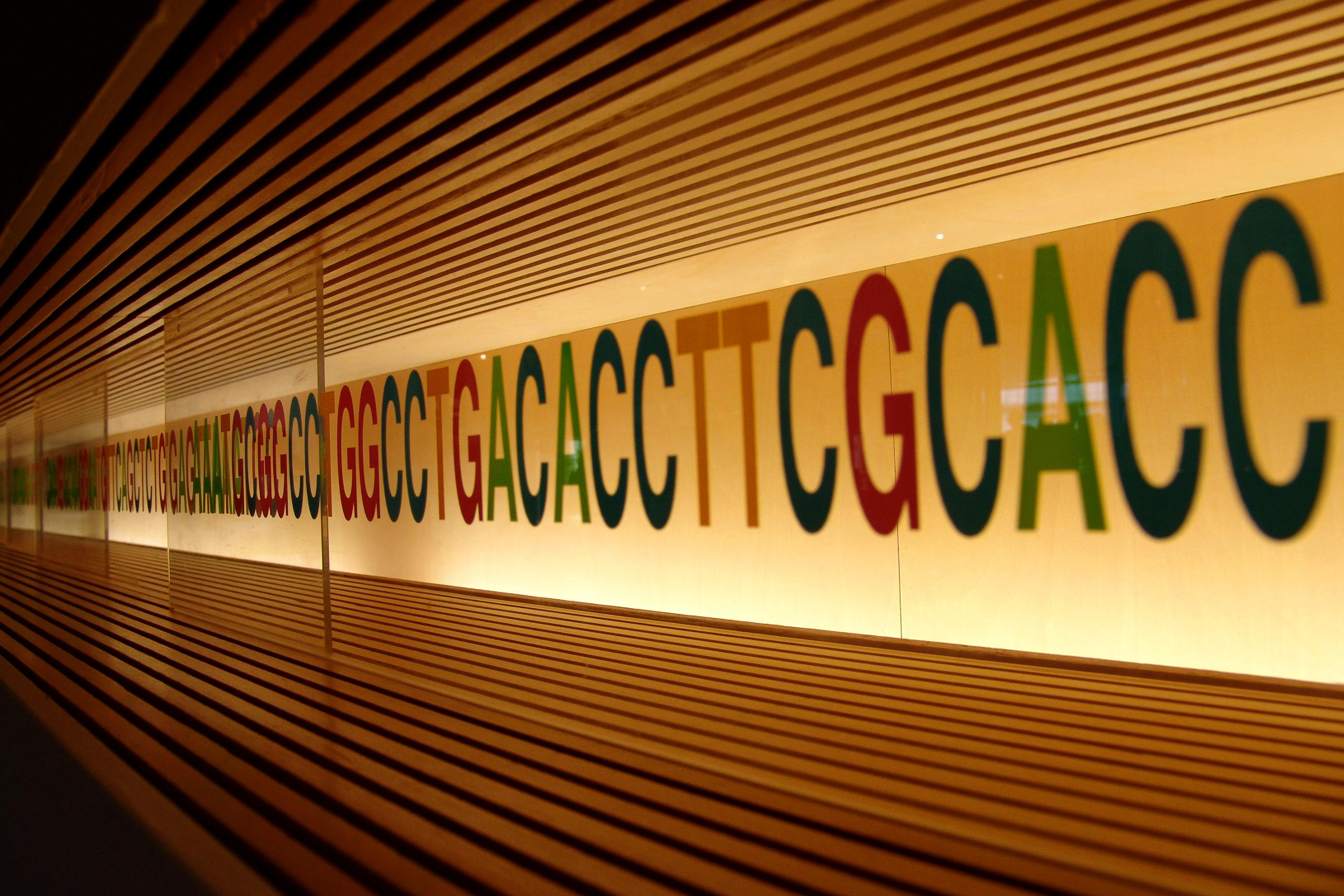 The letters ATCG are lined on a wall, with several different colors against an illuminated background