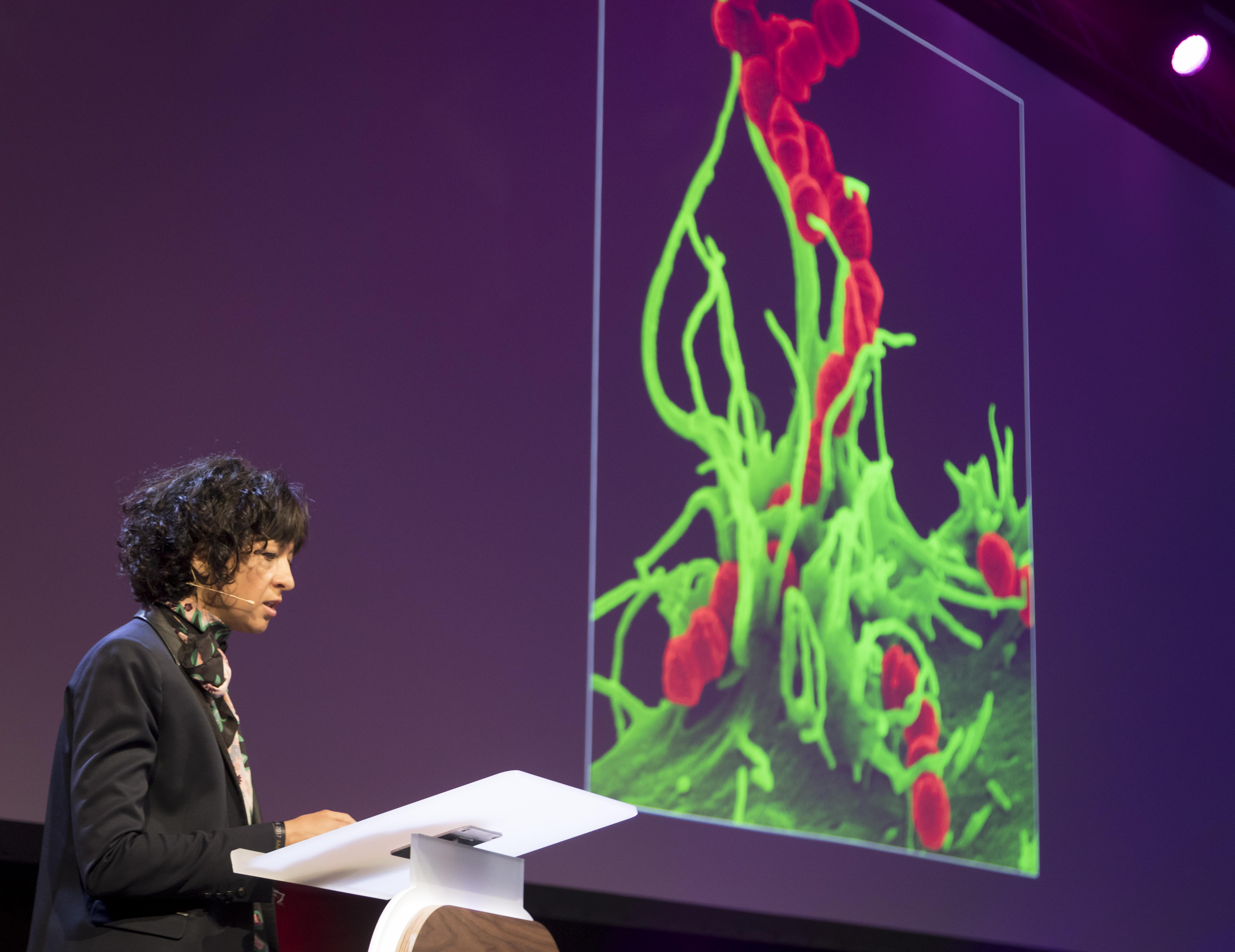 Photo of Charpentier presenting, with a picture of microscopic cells in the background.