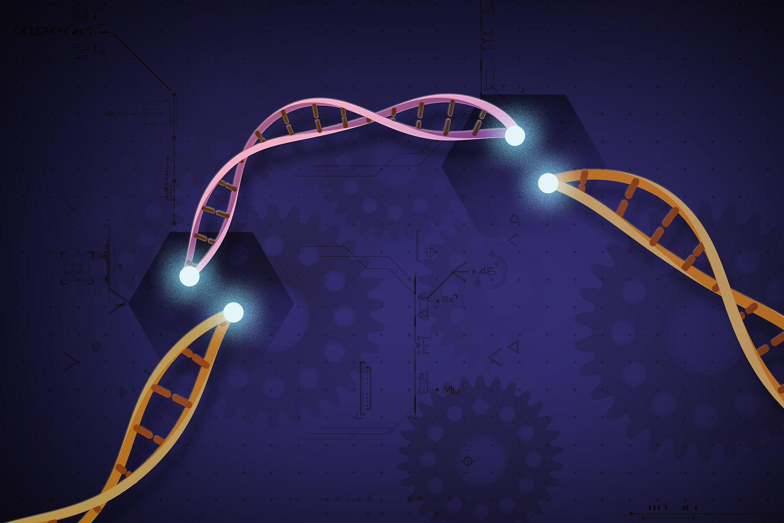 Graphic of DNA with piece removed