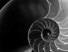Black and white photo, in bird's eye view, displaying a spiral staircase.