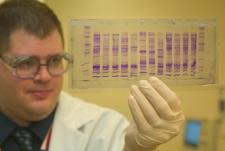 Man holding up clear plate with DNA
