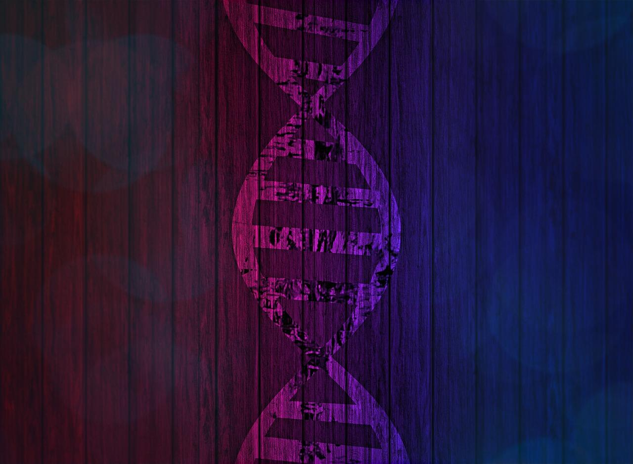 Silhouette of DNA in pink-purple, against a gradient of magenta to blue covered in scratched black vertical lines.