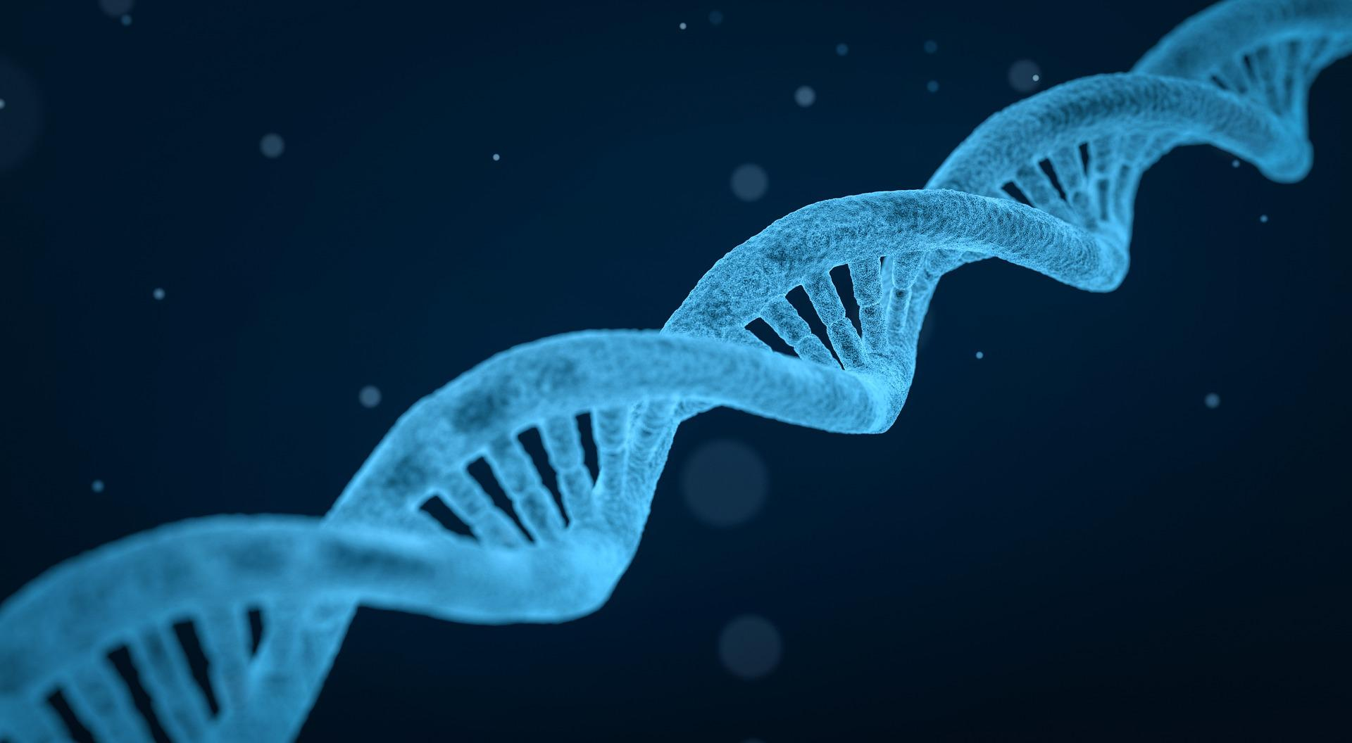 Blue double helix DNA strand on dark blue background