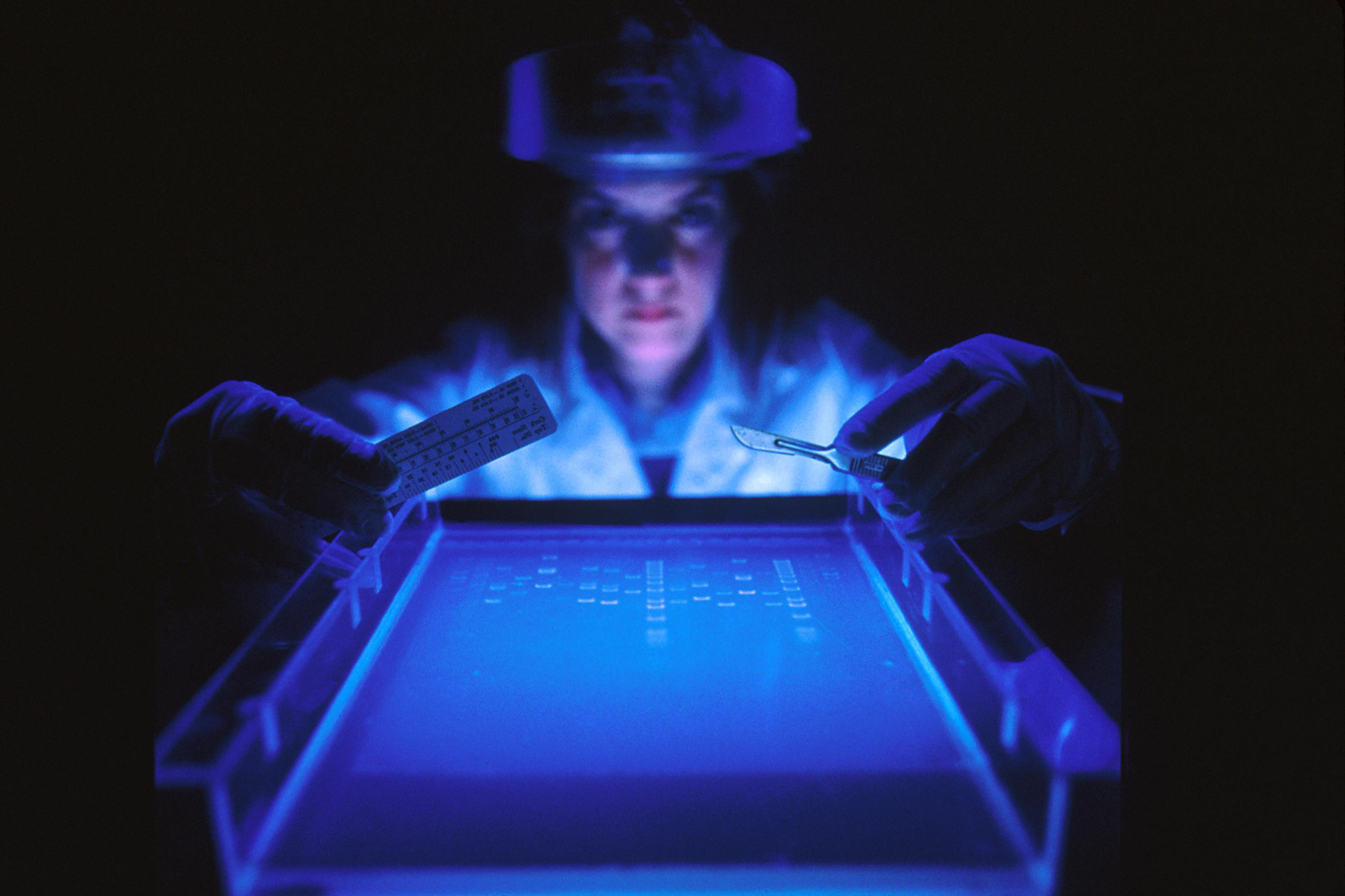 A female scientist looks closely at a dye marker on agarose gel used to separate DNA