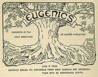 "Sketch of a tree with a sign at the top that says ""Eugenics"""