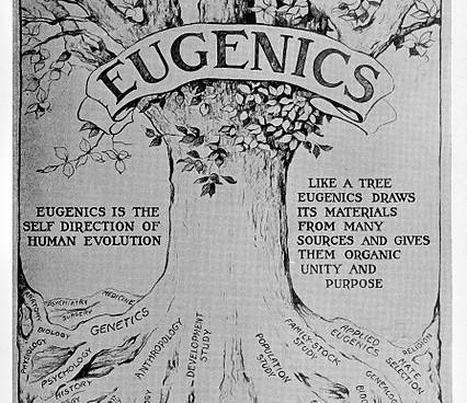 "Illustration of a tree draped with a banner that reads ""EUGENICS."" The roots of the tree have the names of various disciplines on them, e.g. genetics, genealogy, biology, history."