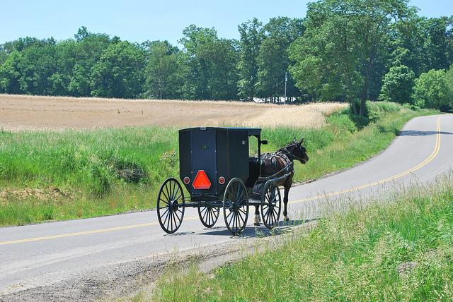 A black buggy pulled by a horse on a road with green fields on either side