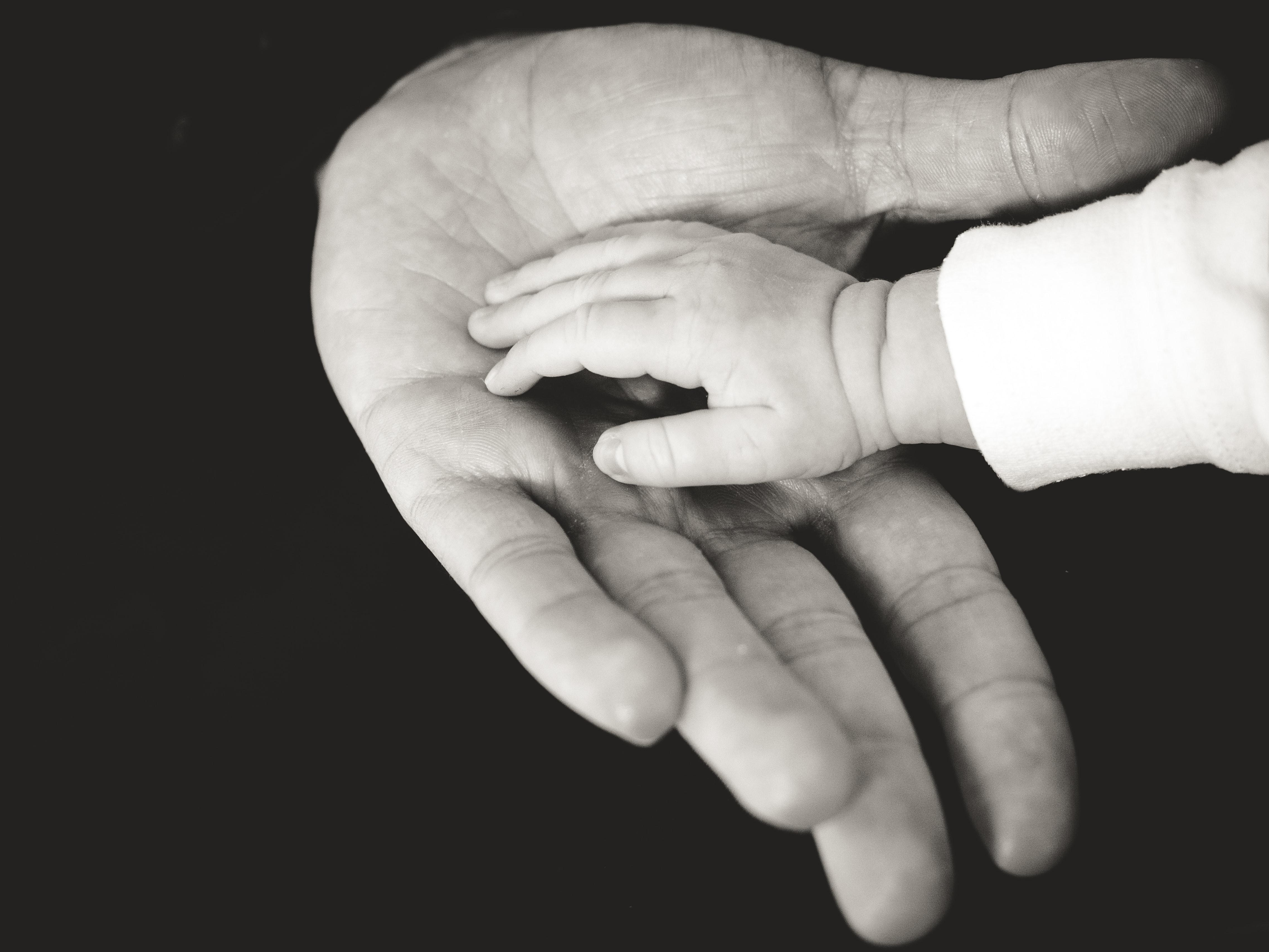 Baby's hand in an adult's