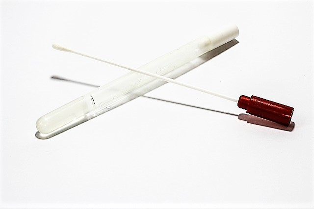 Image of a white cotton swab and clear test tube against a white background.