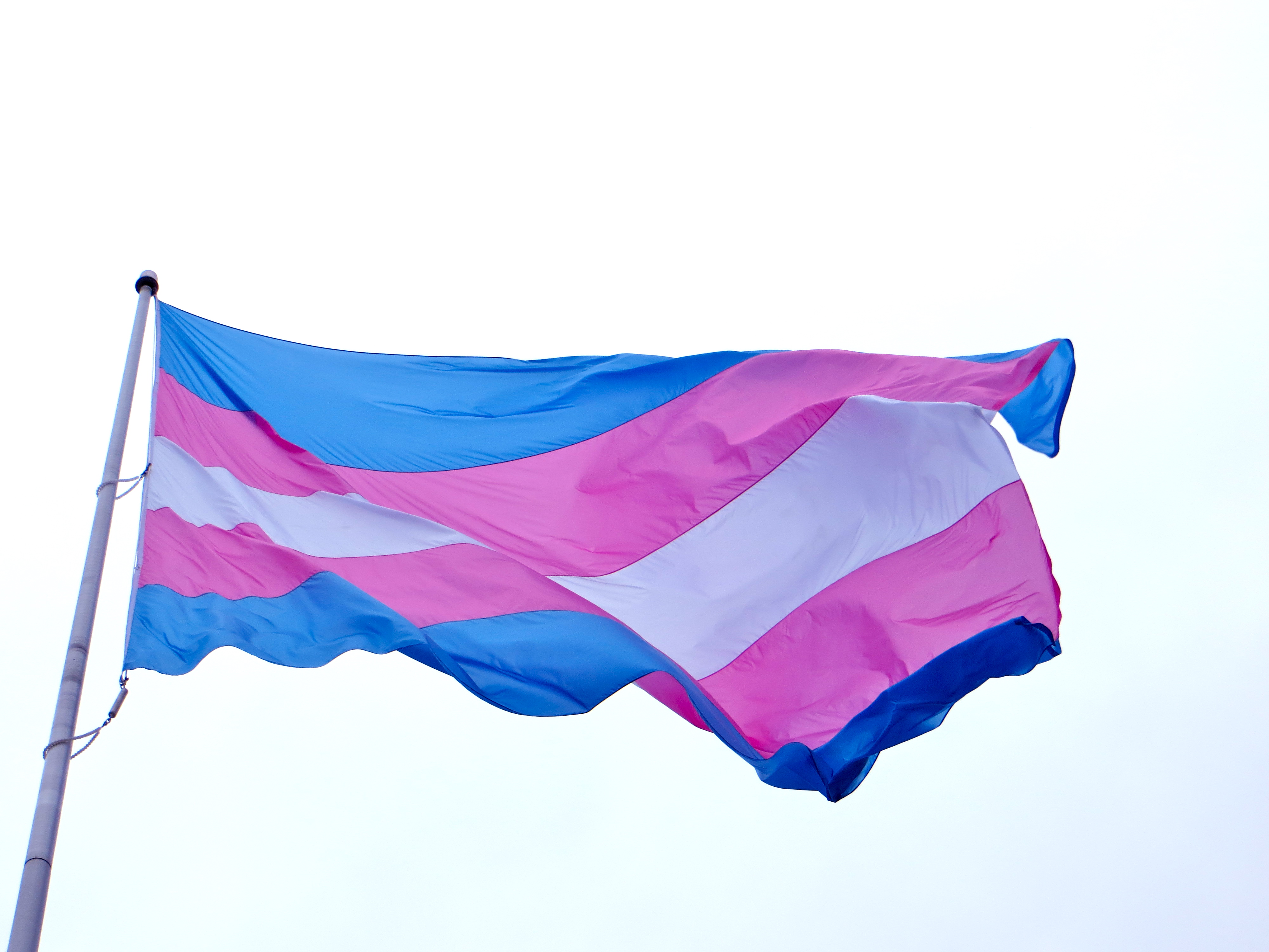 Blue, pink and white transgender flag flying