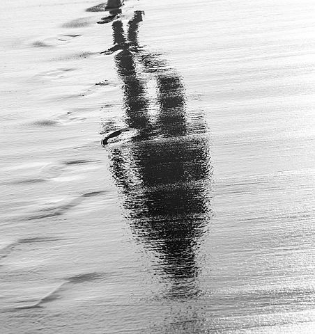 Grayscale photo of a person's refection from a puddle of water, as they walk .